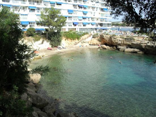 Small cove i didn 39 t like it but plenty others did for Aparthotel jardin del mar santa ponsa