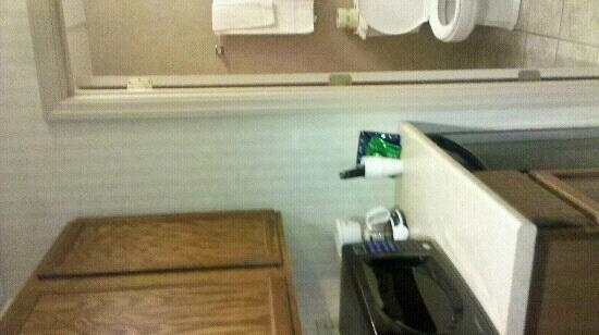 Eisenhower Hotel & Conference Center: View of kitchenette and bathroom in room 414