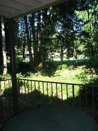 Whispering pines resort welches oregon for Whispering woods cabins