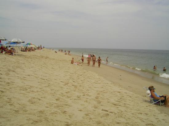 Skaket Beach Motel: Nauset beach, cot nord