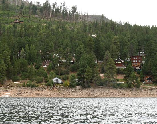 Pine River Lodge: View of the lodge, burned pines, and nearby private cabins from the water