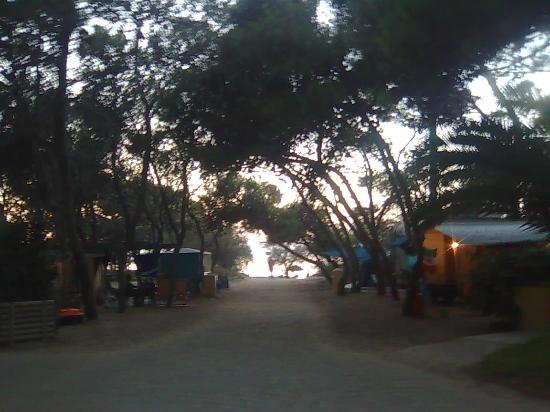 Camping La Vecchia Torre: ingresso della parte sul mare