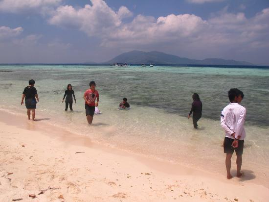 Karimun Jawa, : view of karimun jawa island from cemara island