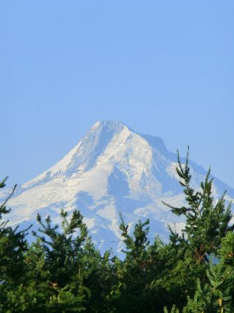 Seven Oaks Bed and Breakfast: Mt. Hood from the front porch of Seven Oaks B 7 B