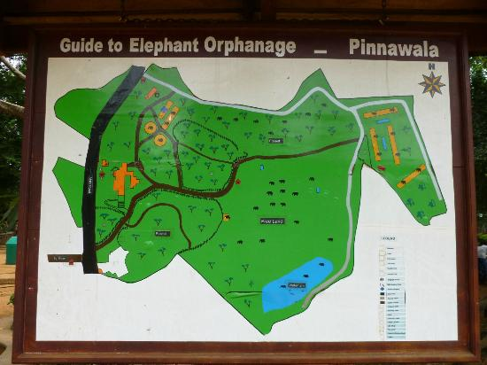 Park map  - Picture of Pinnawala Elephant Orphanage, Pinnawala