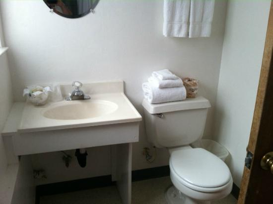 Cambria Palms Motel: Bathroom - clean, clean, clean