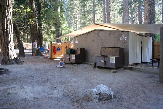 View Of The Units Picture Of Housekeeping Camp Yosemite