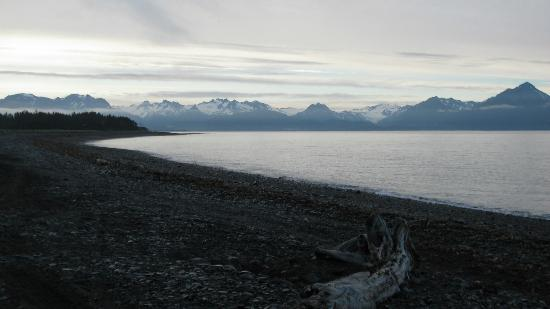 Driftwood Inn & Homer Seaside Lodges: view from the beach