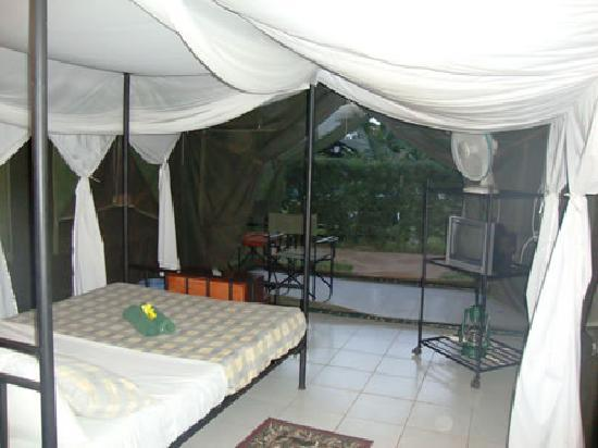 Impala Safari Lodge