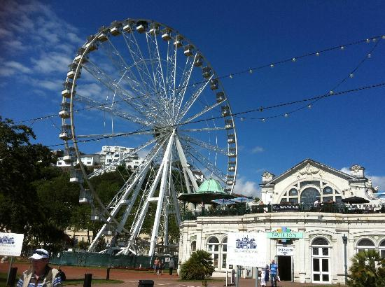 Glendower: Torquay eye from Olympic stadium.