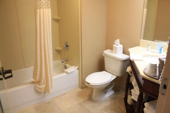 Hampton Inn Marlborough: bathroom
