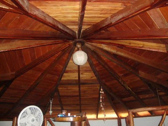 Colibri House: The ceiling from the loft