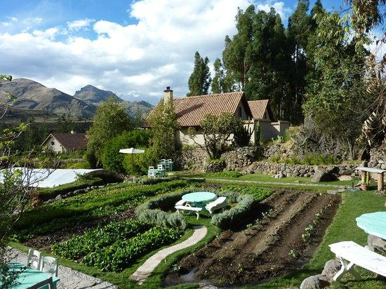Las Casitas del Colca: vegetable garden