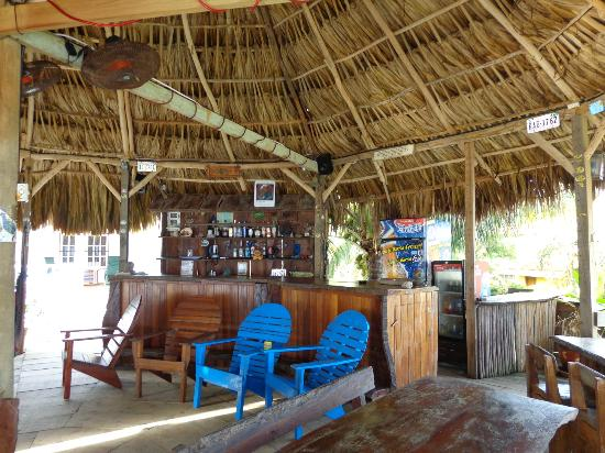Paradise Found: bar/dining area