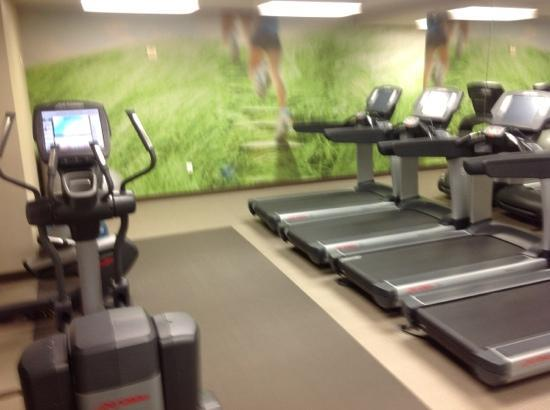 The Westin Palo Alto: the gym