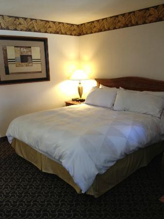 Radisson Hotel San Diego - Rancho Bernardo: Bed located in the back of the suite, great bed & Linens!