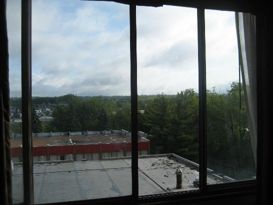 Ramada Plaza Albany: room window that opens