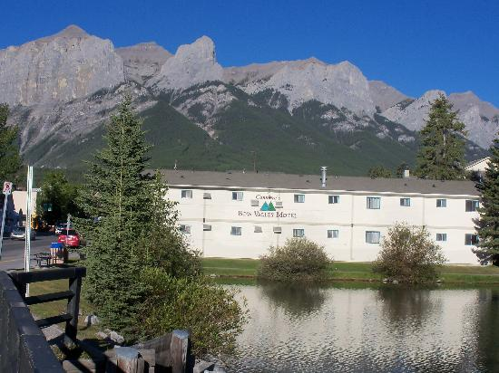 Bow Valley Motel: Back of Motel from River bridge