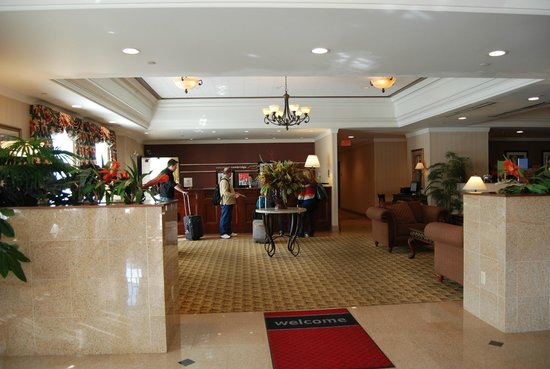 Hampton Inn Boston / Cambridge: reception