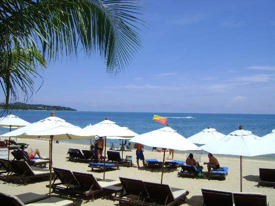 Thai House Beach Resort: View from terrace