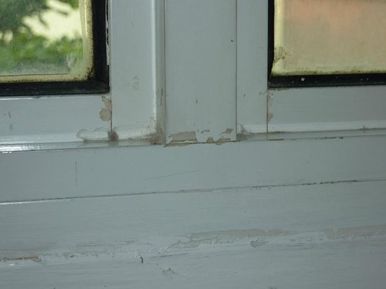 Link Hotel: Mould on window in room