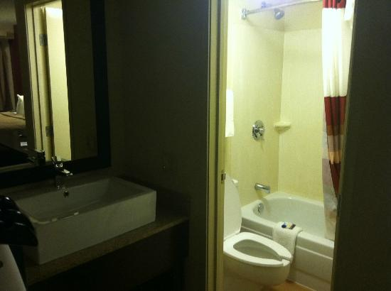 Red Roof Inn Wilmington: bathroom