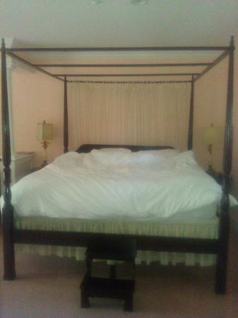 Hampton Terrace Bed and Breakfast Inn : Look at that bed!