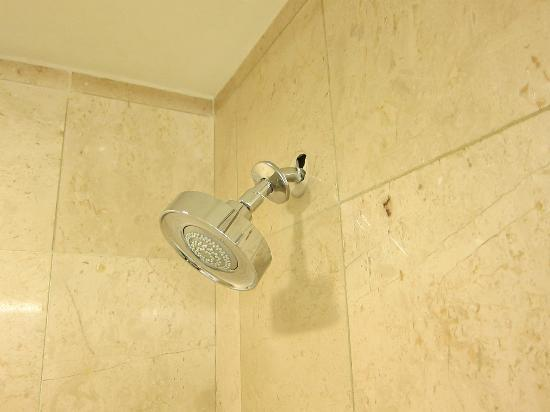 Sheraton Ann Arbor Hotel: shower head not connected quite right