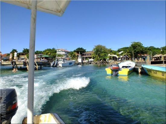 Reef House Resort: Water Taxi leaving West End