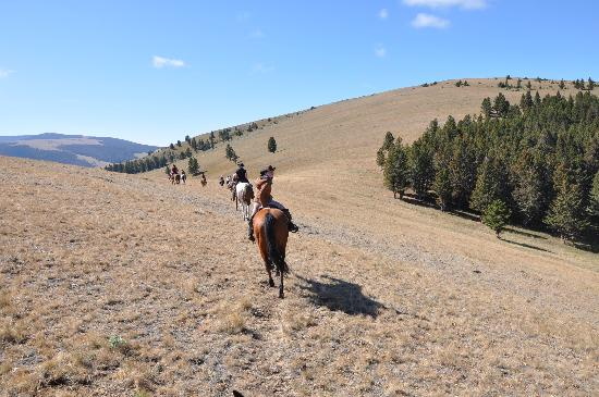 Bonanza Creek Guest Ranch: Montana dreaming