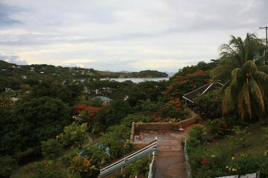 Sugarapple Inn: view from entry path