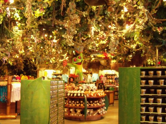 Why we will continue to love rainforest cafe dynamite in 2016