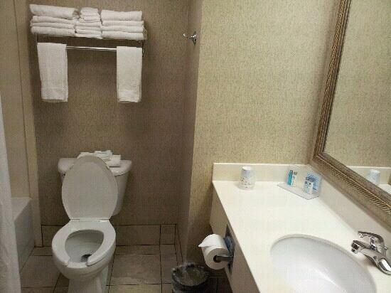 Hampton Inn Mobile I-10/Bellingrath Gardens: bathroom