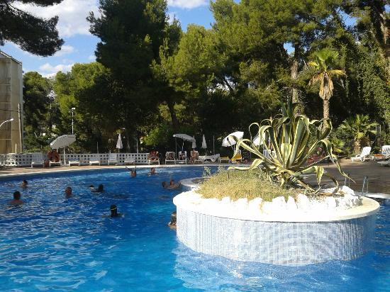 Best Mediterraneo : Pool area