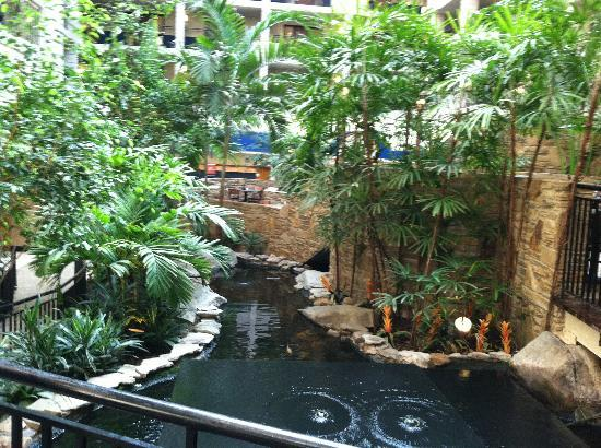 Embassy Suites Baltimore - North /  Hunt Valley: Pond