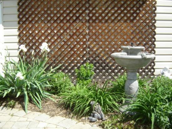 The Brass Bell: Another garden view