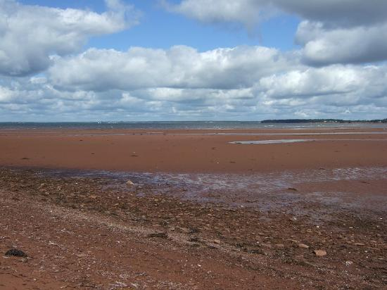 Briarcliffe Inn: Low Tide