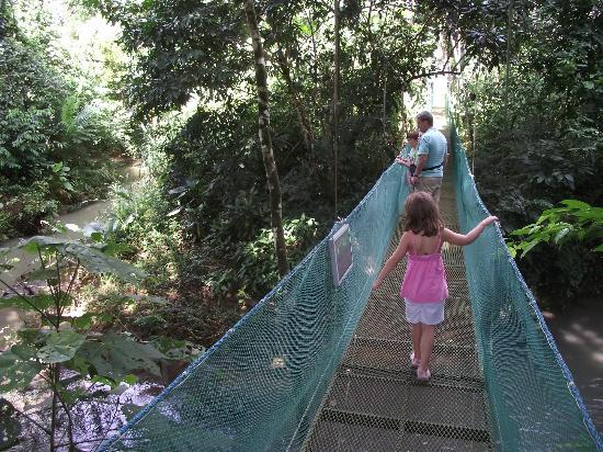 La Foresta Nature Resort: bridge on hiking trail