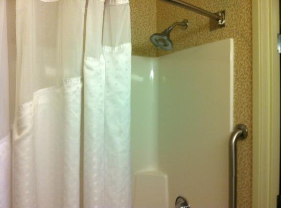 Riverwoods, IL: Rain shower head and curved shower curtain rod