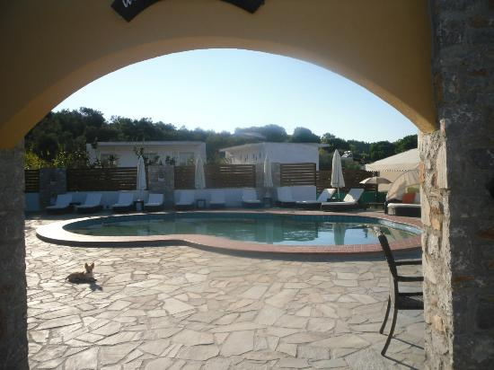 Skiathos Island Suites: Pool