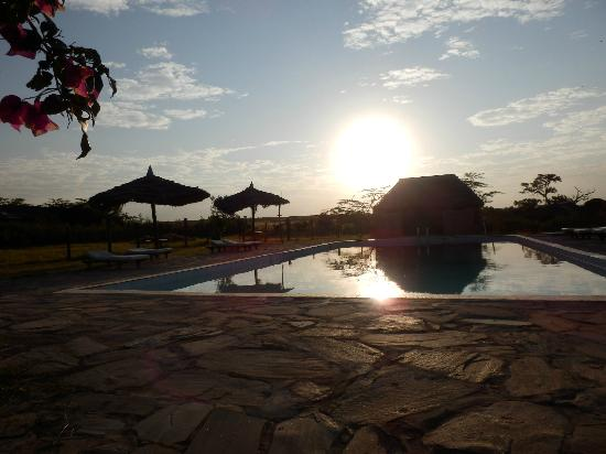 Kichakani Mara Camp: swimming pool at dawn
