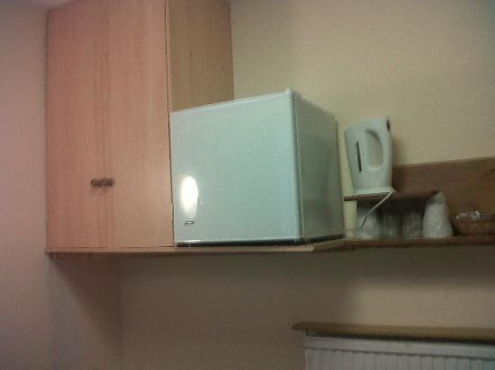 Holly House Hotel: Mini-fridge and kettle