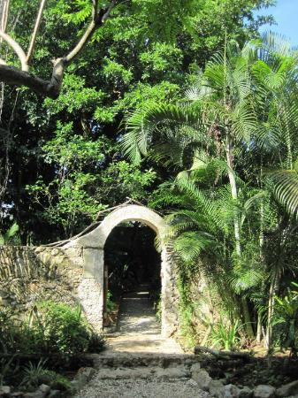 Casa Quetzal: the entry into another part of the garden