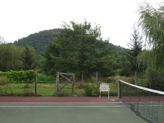 Inn at Charlotte Bed and Breakfast: Tennis court and view of Mt. Philo