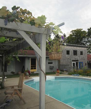Inn at Charlotte Bed and Breakfast: grape arbor and B&B