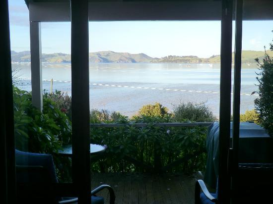 Harbour View Motel: you just cannot get bored of that view