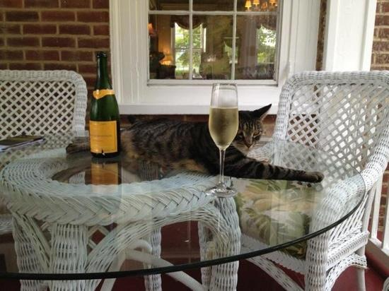 Middleton Inn: Enjoying the champagne with a friend of the house