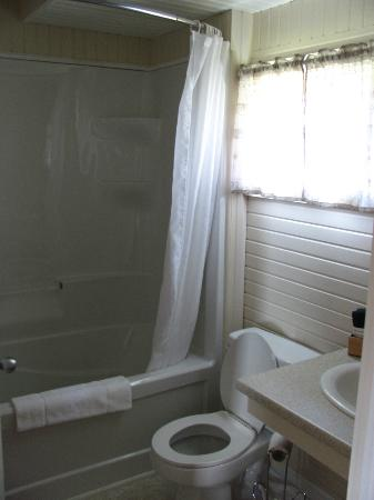 Bay Vista Motel: Bathroom