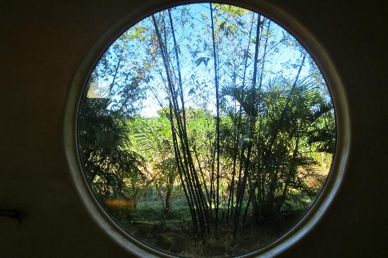Spyglass Maui Rentals: View out big window in Yoga room