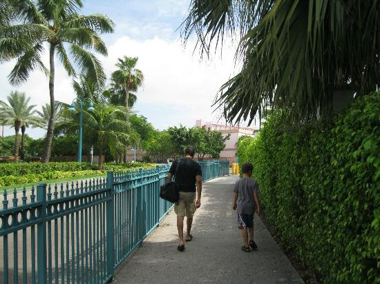 Comfort Suites Paradise Island: street along hotel